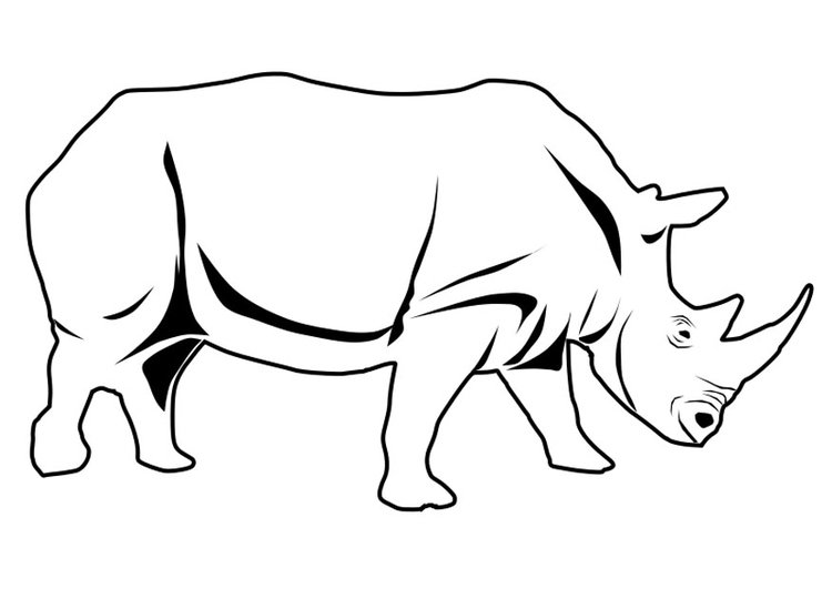 Dibujo para colorear rinoceronte - Img 27337