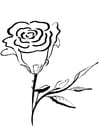 Dibujo para colorear rosa