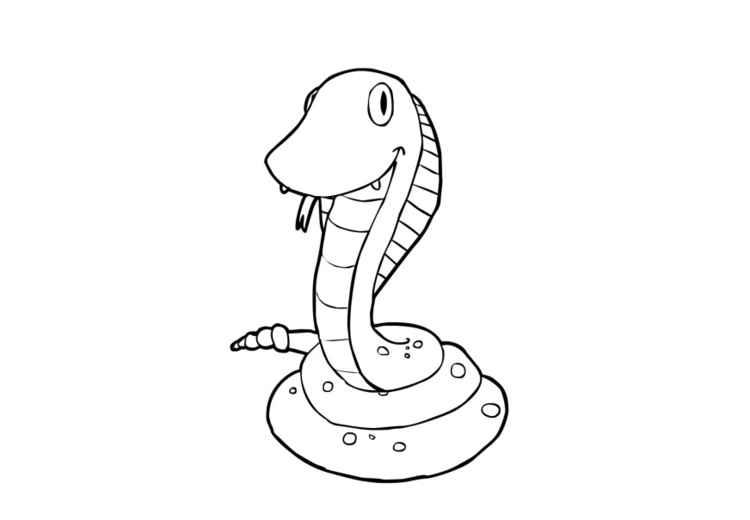 Dibujo para colorear Serpiente - Img 13935