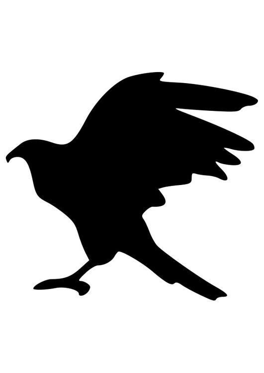 Dibujo para colorear silueta de águila - Img 27528