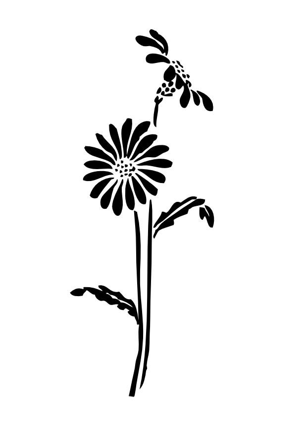 Plantas Contra Zombis Imagenes Y Descargar - IMAGENES DE