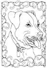 Dibujo para colorear staffordshire bull terrier