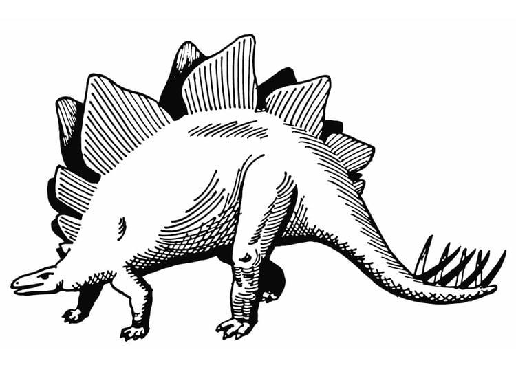 Dibujo para colorear Stegosaurus - Img 13284