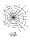 Dibujo para colorear tela de araña con araña
