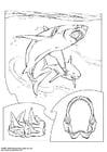 Dibujo para colorear Tiburón