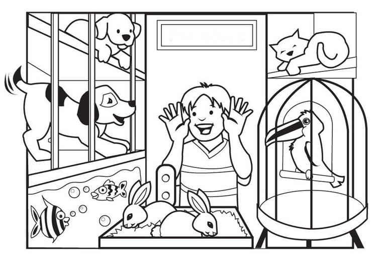 Dibujo Para Colorear Tienda De Mascotas Img 7080