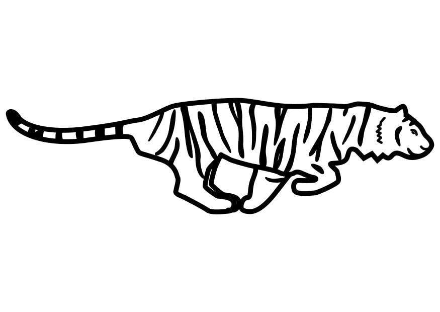 Dibujo para colorear tigre corriendo img 10488 for Immagini tigre da colorare
