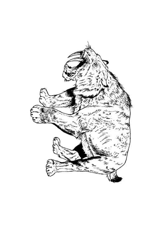 Dibujo para colorear Tigre dientes de sable - Img 9106