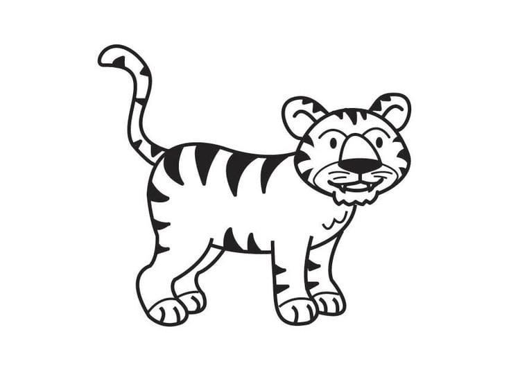 Dibujo Para Colorear Tigre Img 17818 Images