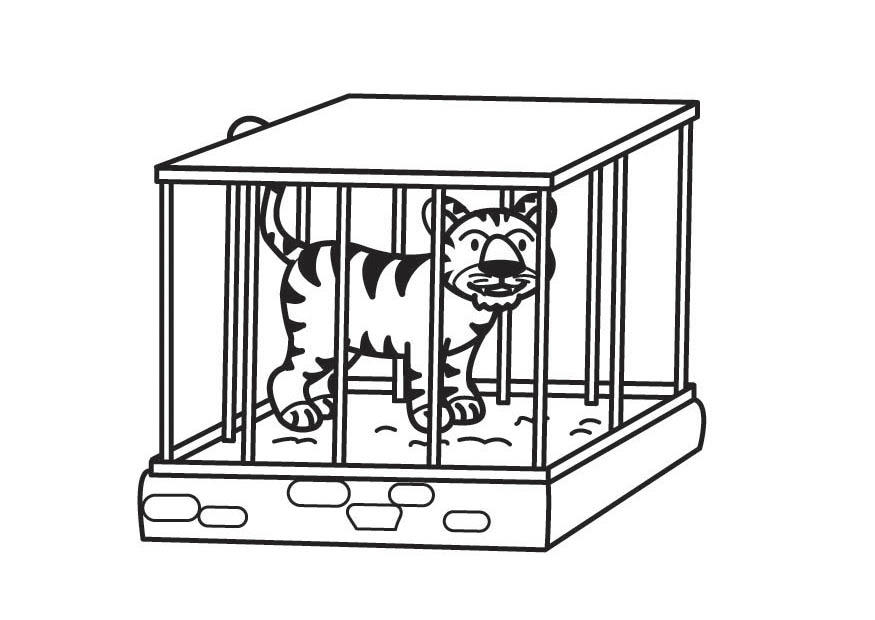 Dibujo Para Colorear Tigre En Jaula Dibujos Para Imprimir