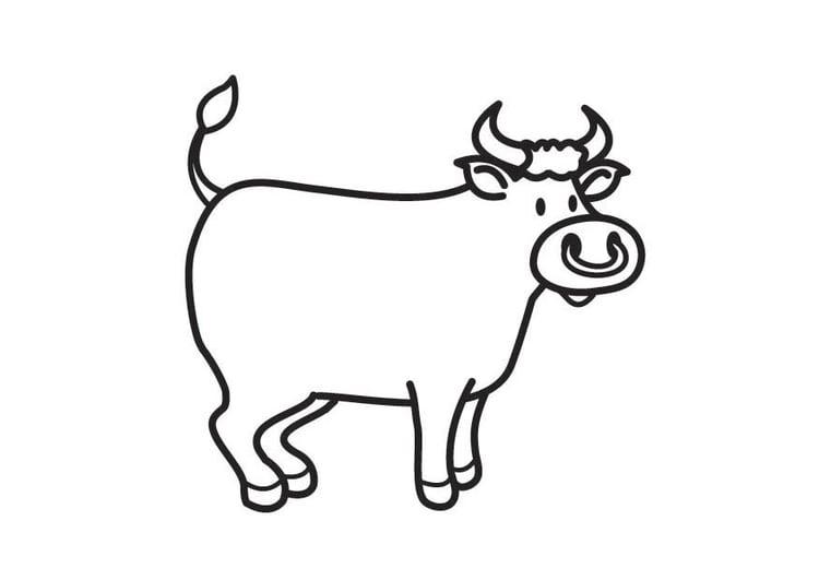 Dibujo para colorear toro - Img 17768