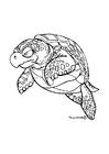 Dibujo para colorear Tortuga marina