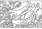 Dibujo para colorear tortuga