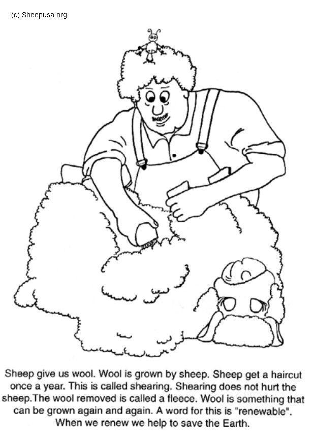 Dibujo para colorear Trasquilar una oveja - Img 6016