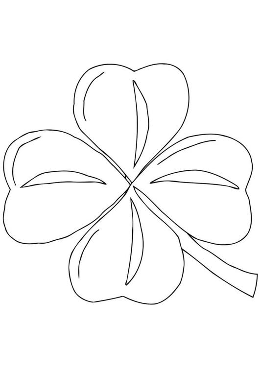 Dibujo para colorear Trébol irlandés - Shamrock - Img 21701
