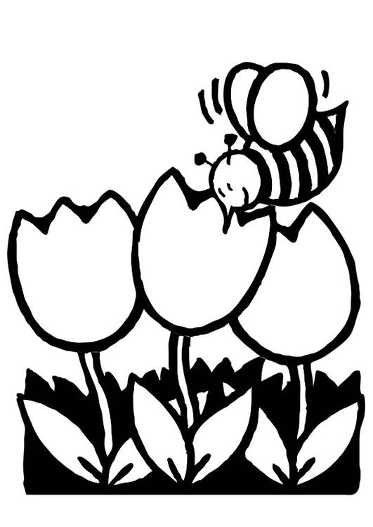 Dibujo para colorear tulipanes con abeja - Img 19239