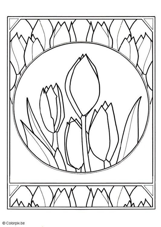 Dibujo para colorear Tulipanes - Img 5659