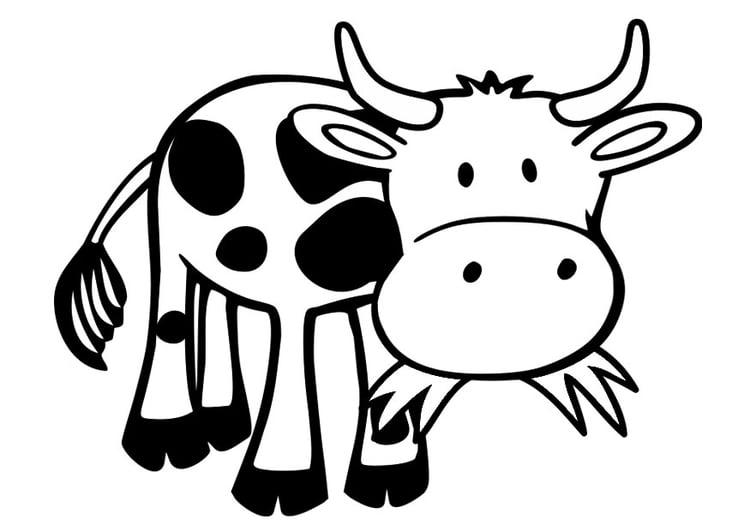 Dibujos De Vacas Animadas Para Colorear: Dibujo Para Colorear Vaca