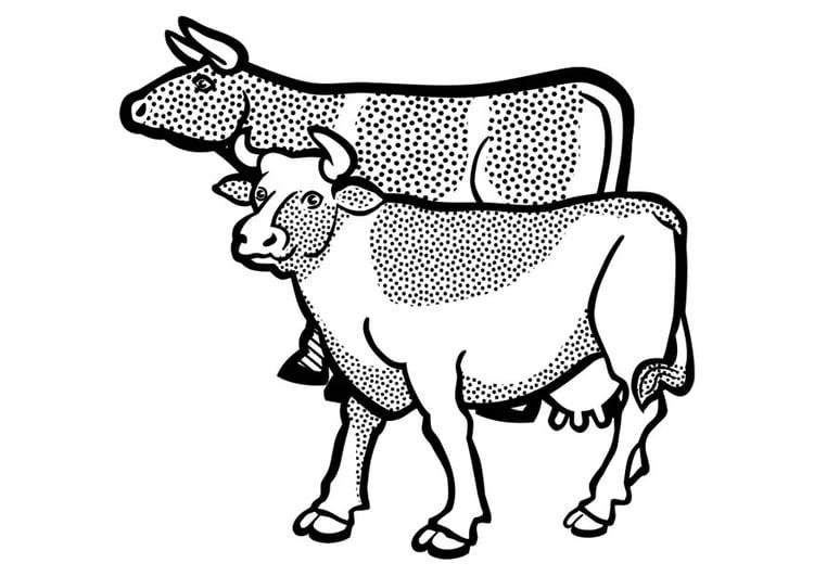 Dibujo Para Colorear Vacas Img 29629
