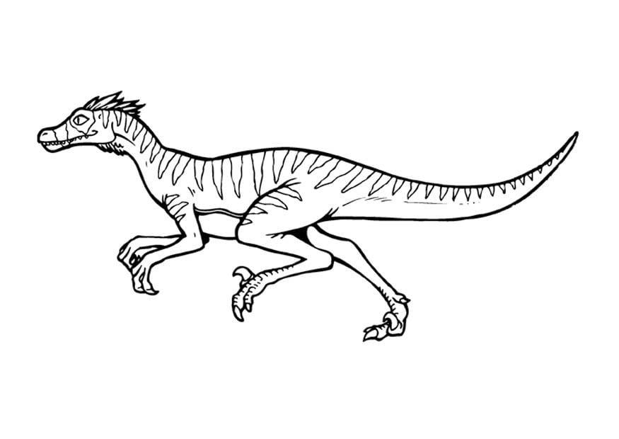 Magnífico Parque Jurásico Raptor Para Colorear Festooning - Dibujos ...