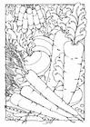 Dibujo para colorear verduras