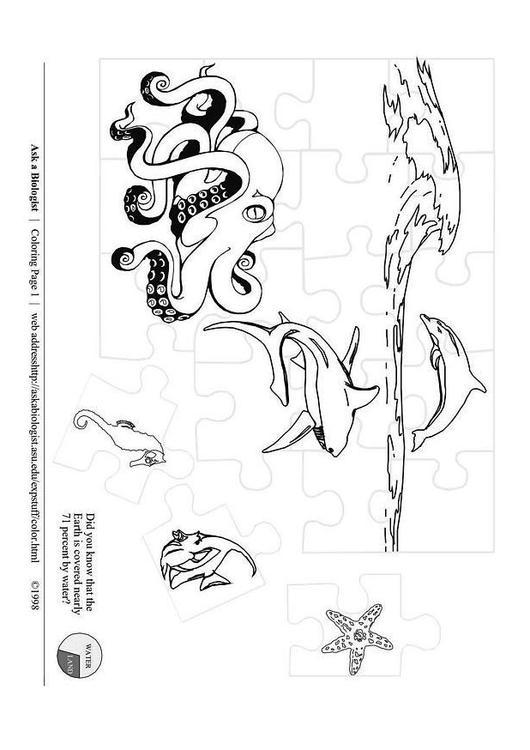 Dibujo para colorear Vida marina - Img 3639