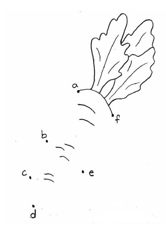 Dibujo Para Colorear Zanahoria Letras Dibujos Para