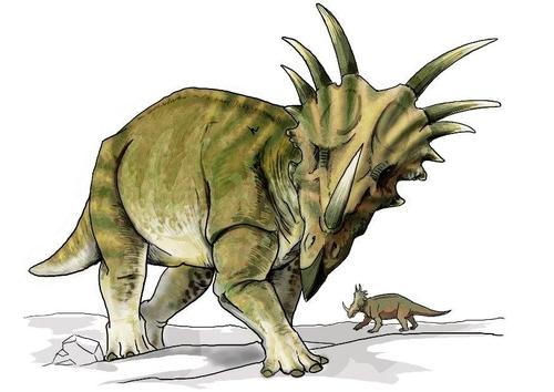 Imagen Dinosaurio styracosaurus