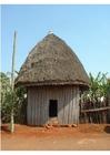 Foto Cabaña africana