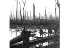 Foto Campo de batalla de la I guerra mundial