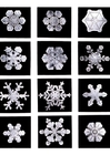 Foto Cristales de nieve