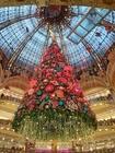 Foto Decoraciones de navidad