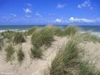 Foto Dunas en la costa