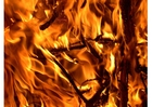 Foto Fuego