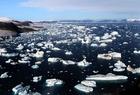 Foto Glaciares e icebergs