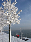 Foto Invierno