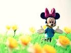 Foto Minnie Mouse