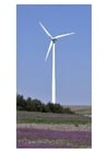 Foto Molinos de viento