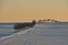 Foto paisaje invernal