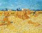 Foto pintura de Vincent van Gogh