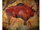 Foto pintura prehistórica - bisonte