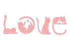 Imagen amor - gatos