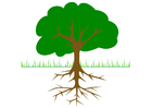 Imagen árbol con raíces
