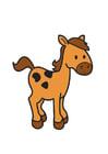 Imagen caballo