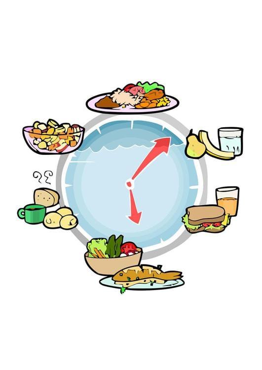 Comida diaria – Comiendo dieta correcta