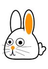 Imagen conejo - oblicuo