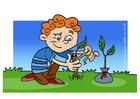 Imagen cuidar de un árbol