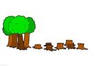 Imagen Deforestación