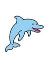 Imagen delfín