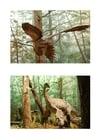 Imagen Dinosaurio con plumas